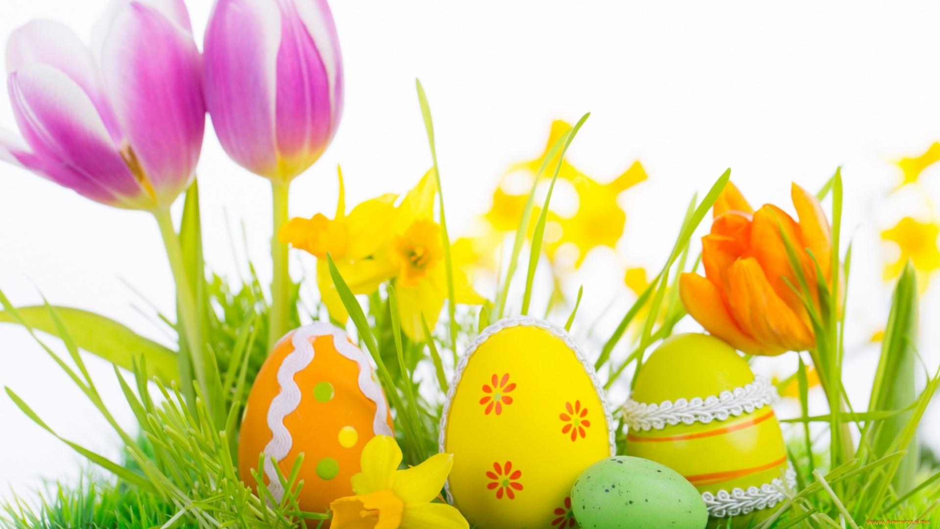 Easter Flowers computer wallpaper