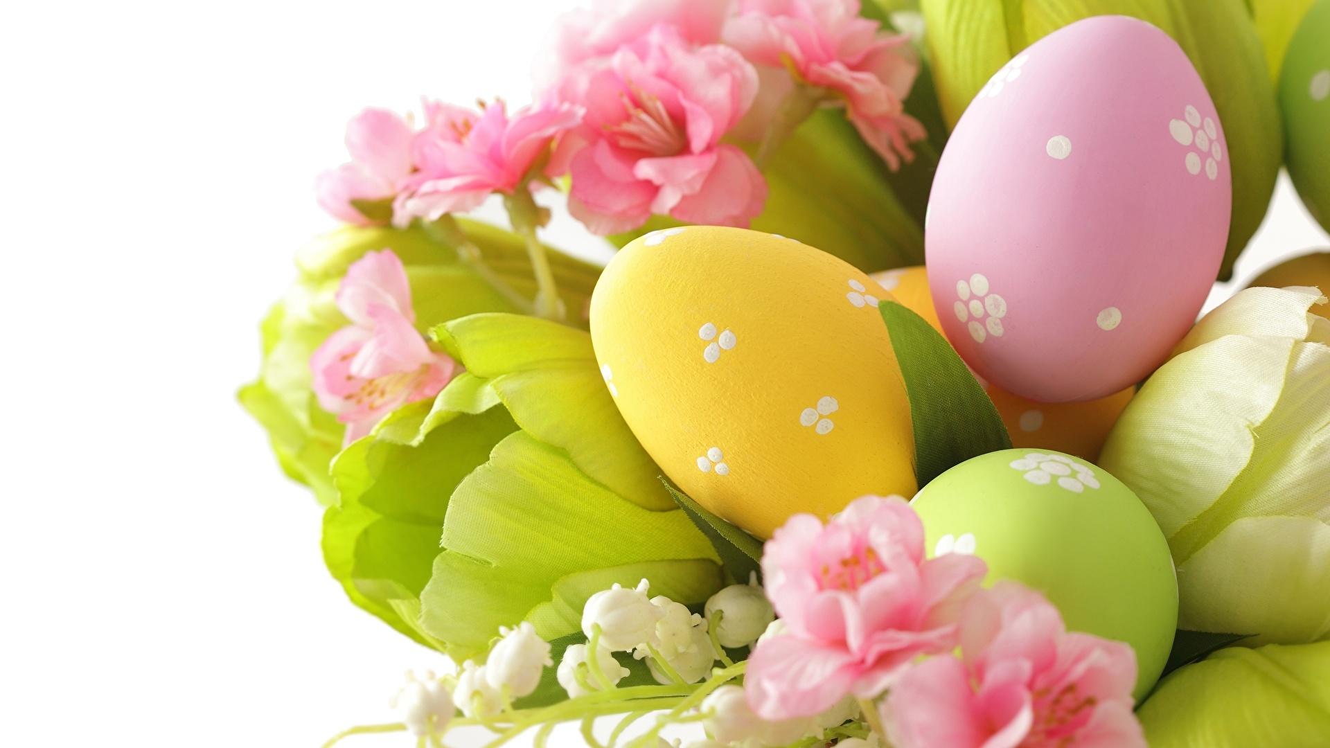 Easter Flowers HD Wallpaper