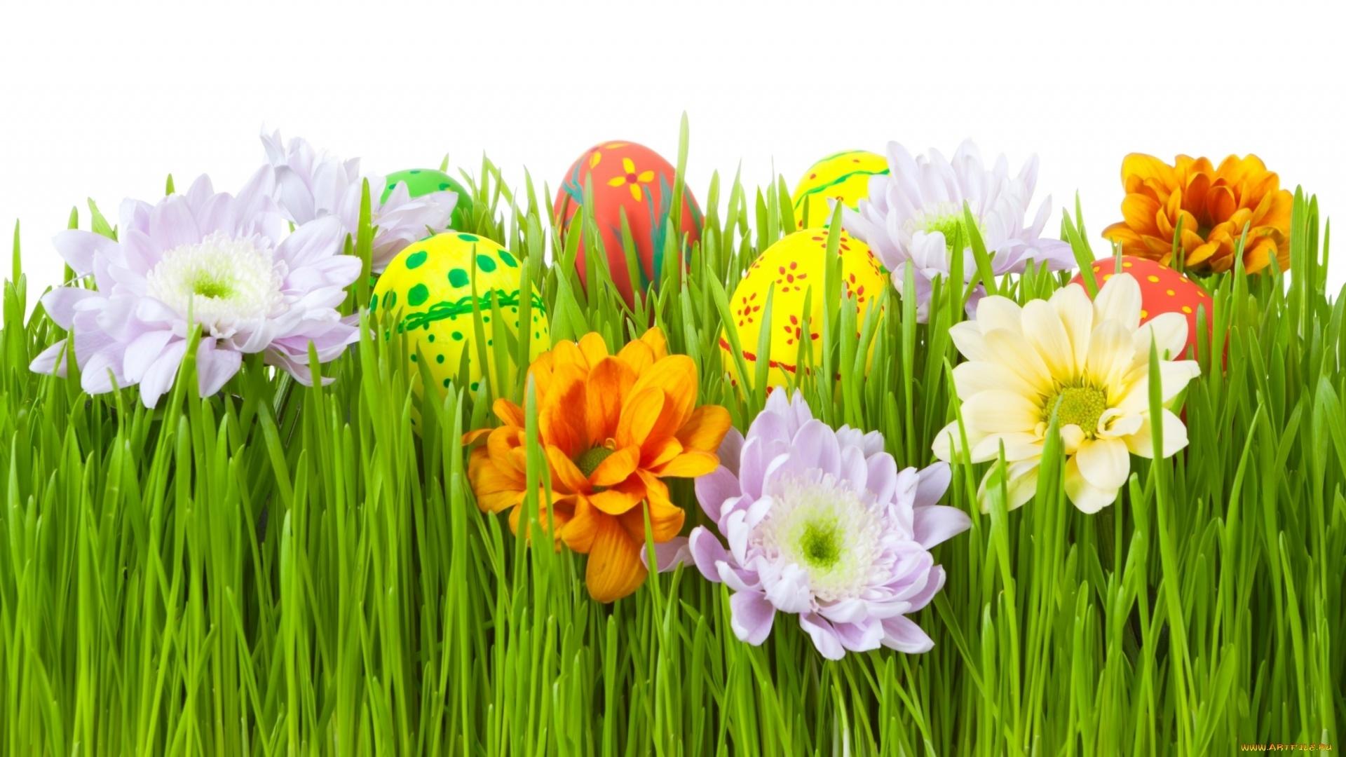 Easter Flowers Desktop Wallpaper