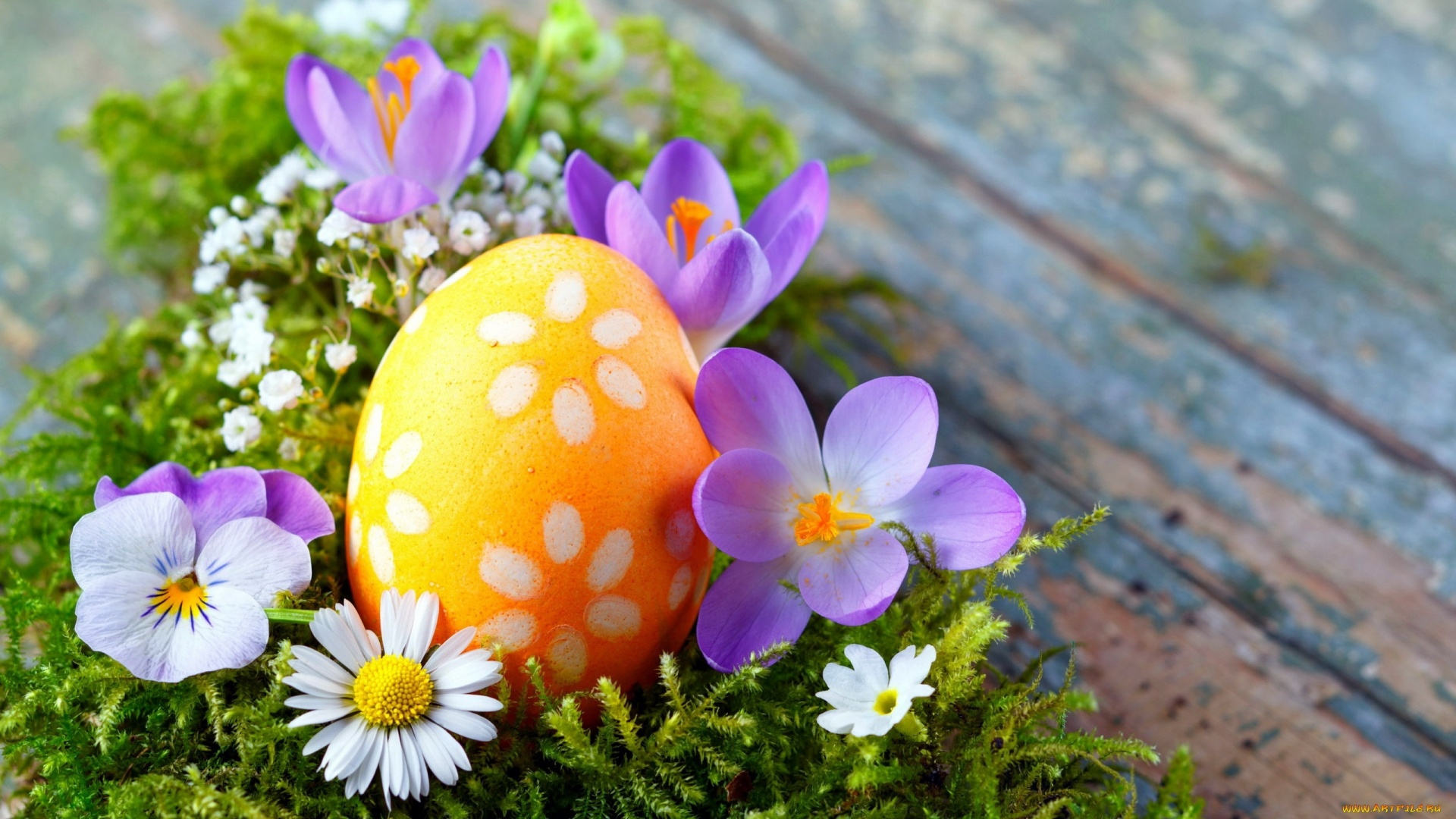 Easter Flowers Pic