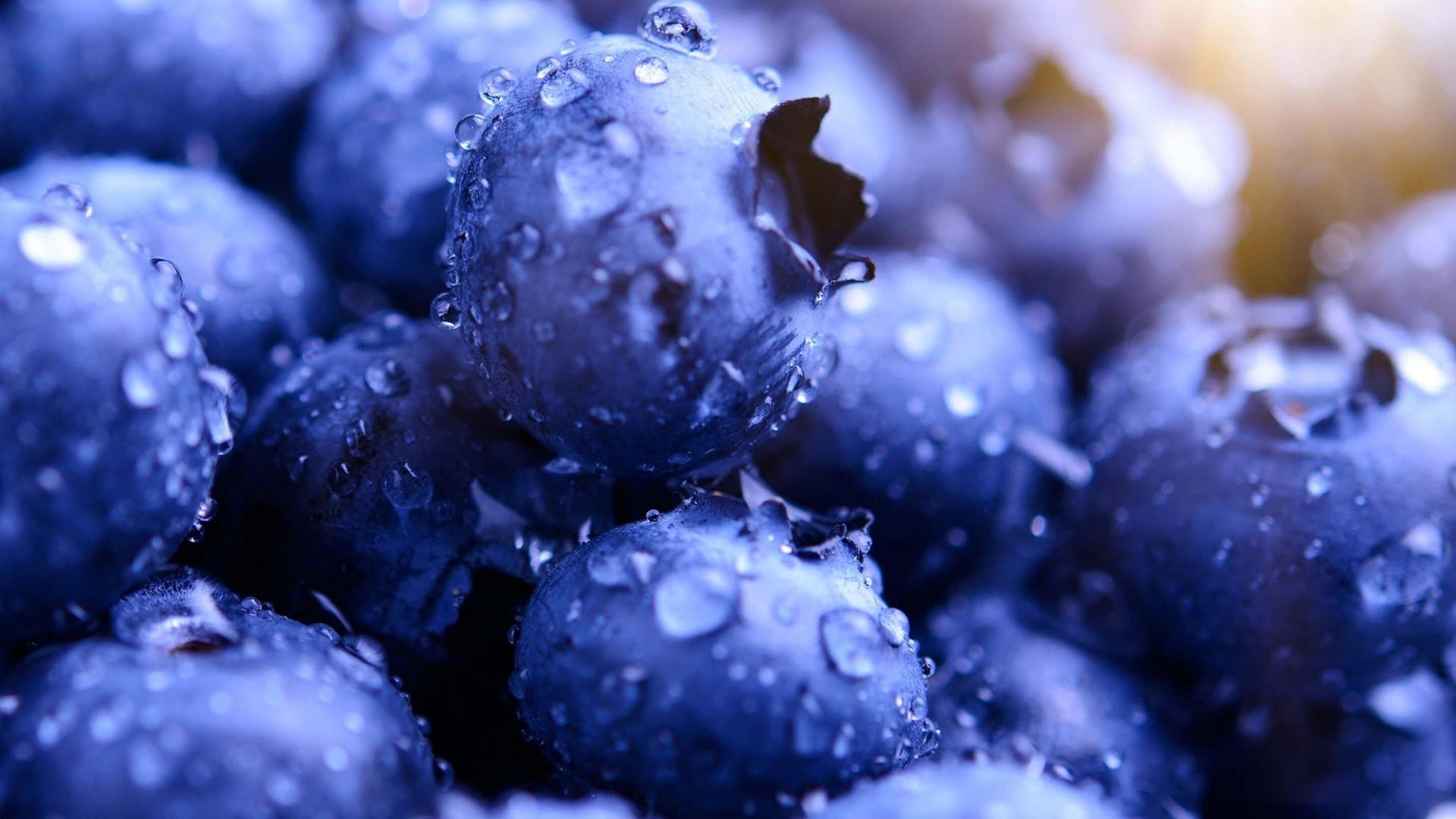 Blueberries Wallpaper theme