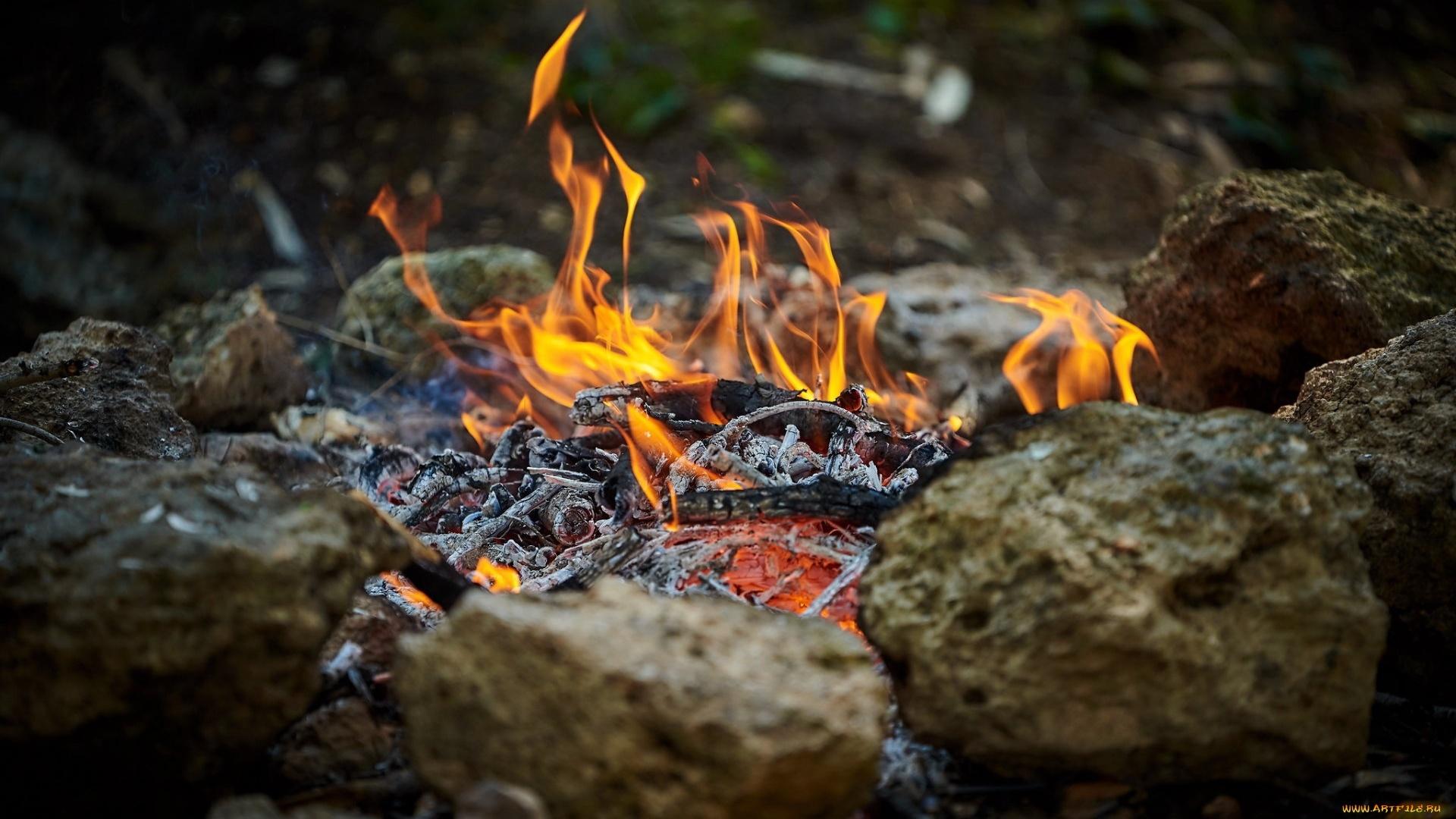 Bonfire Picture