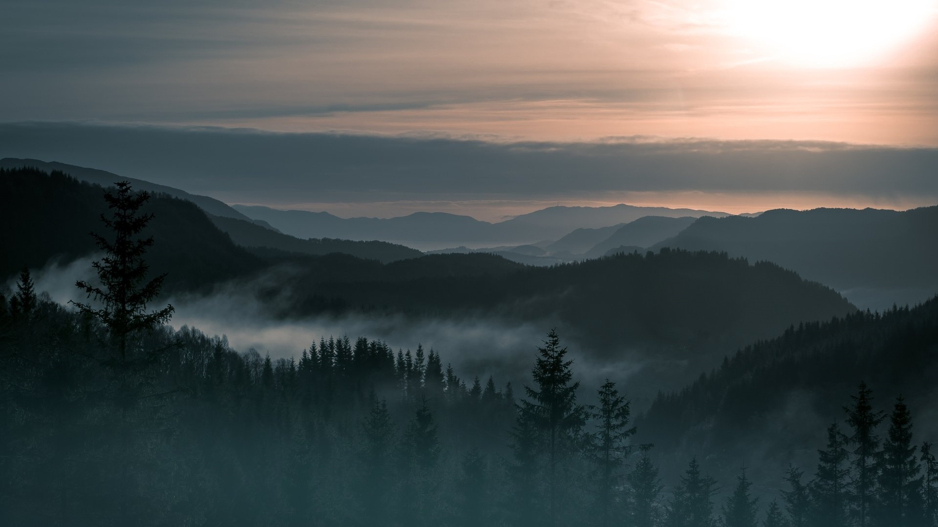 Mountains And Forest In Fog Background