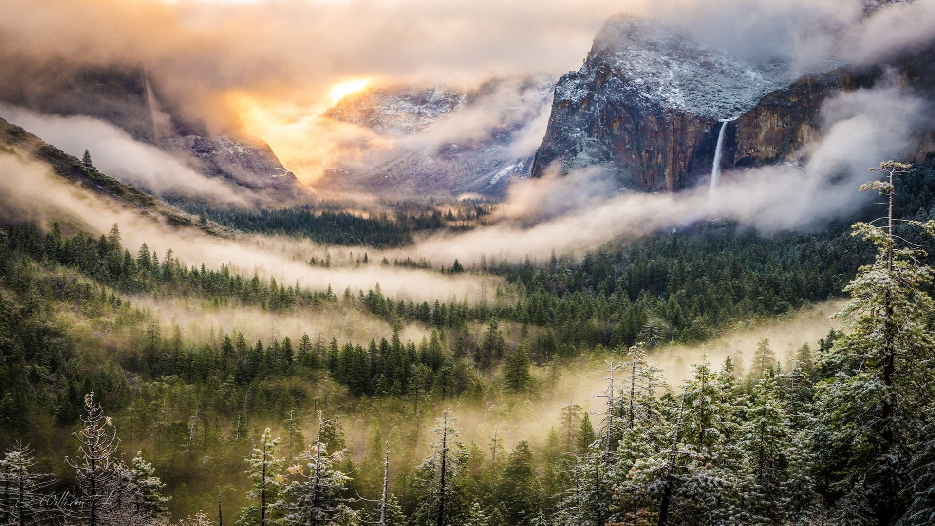 Mountains And Forest In Fog Image