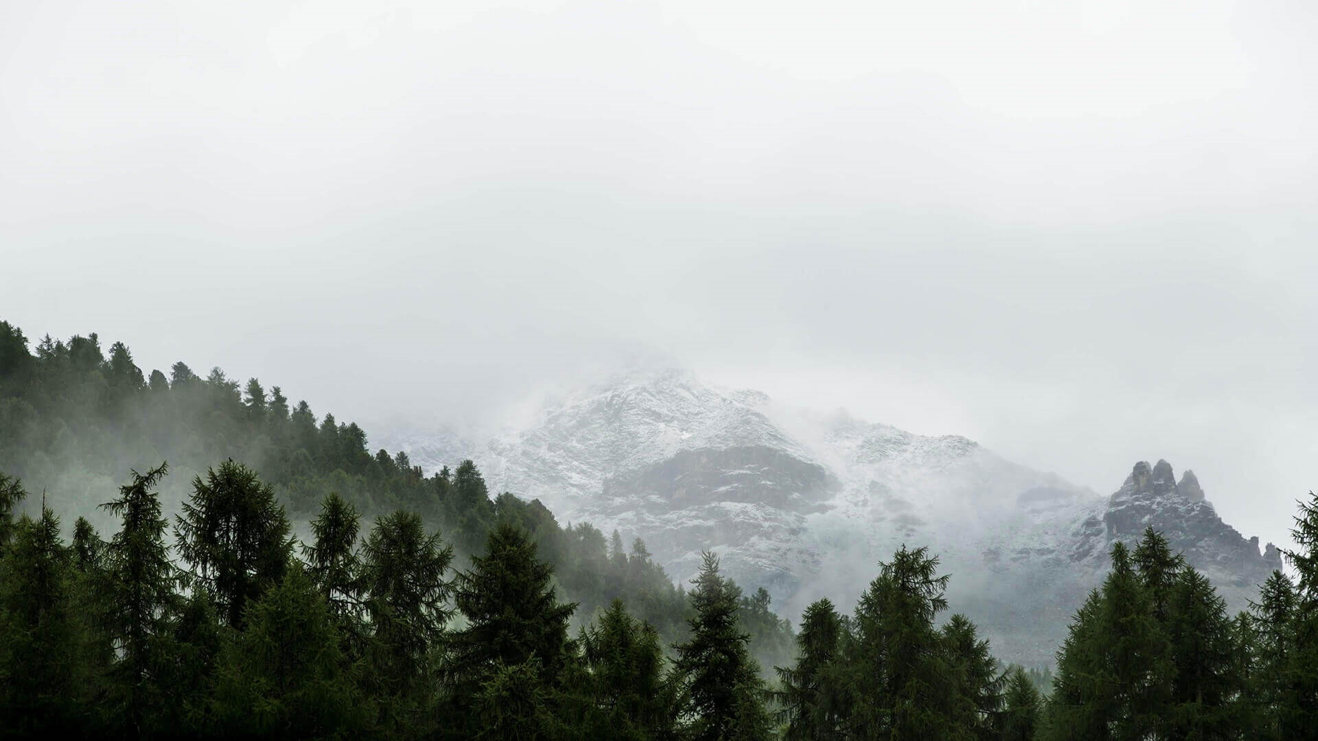 Mountains And Forest In Fog Desktop Wallpaper