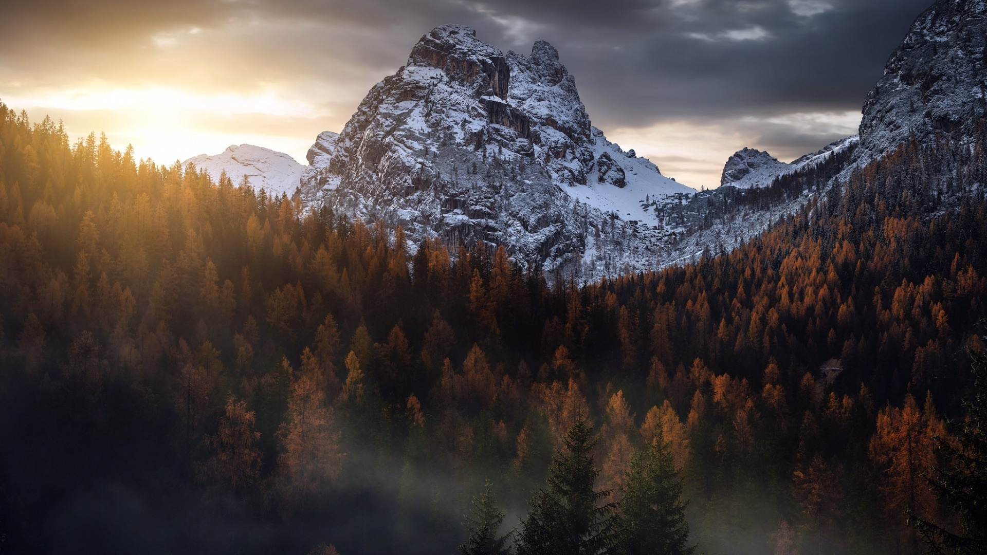 Mountains And Forest In Fog wallpaper photo hd