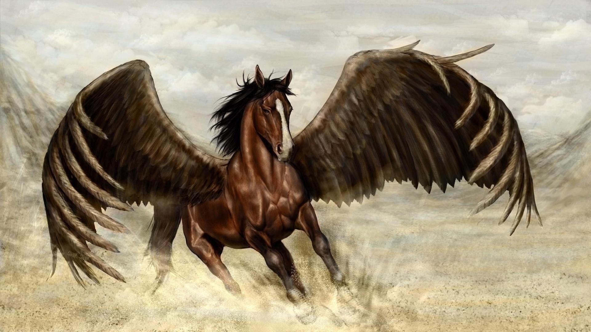 Pegasus Art Wallpaper theme