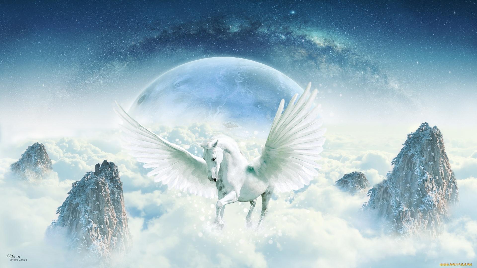 Pegasus Art Pic