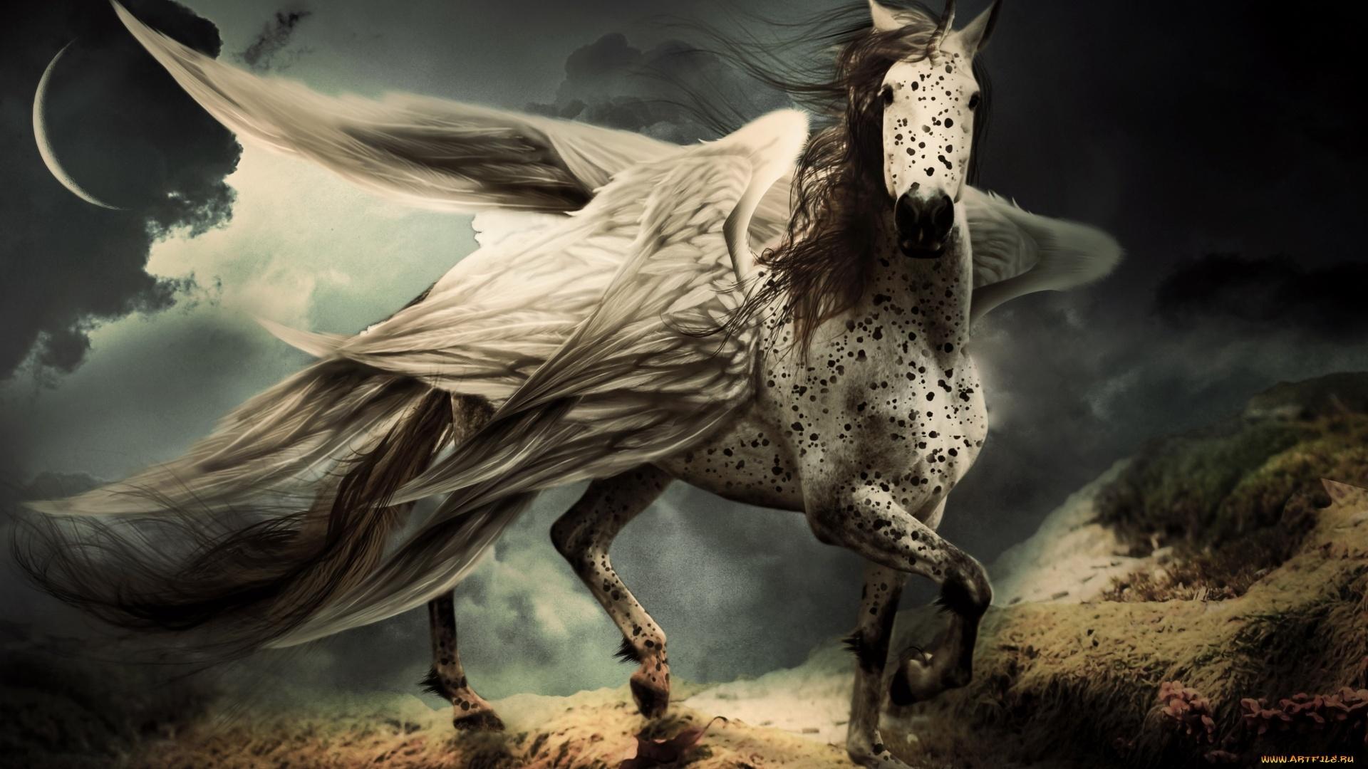 Pegasus Art Wallpaper