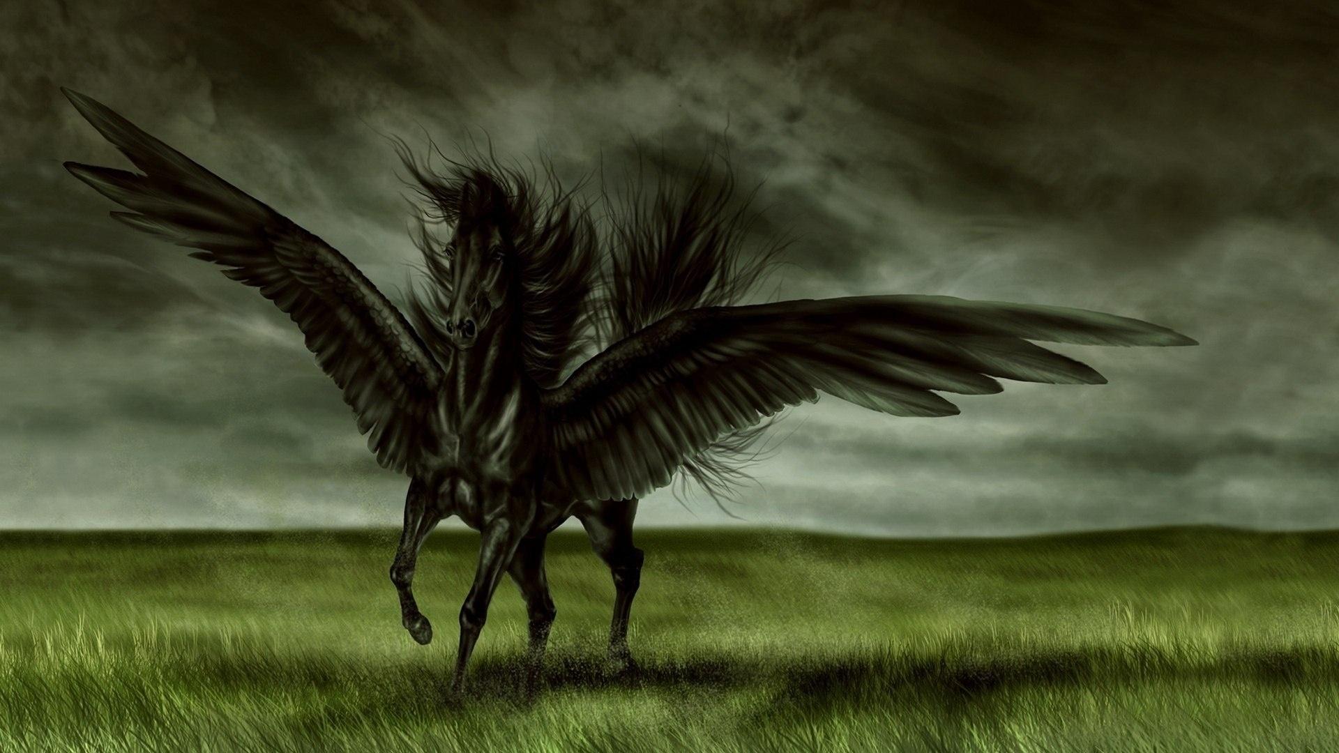 Pegasus Art Picture