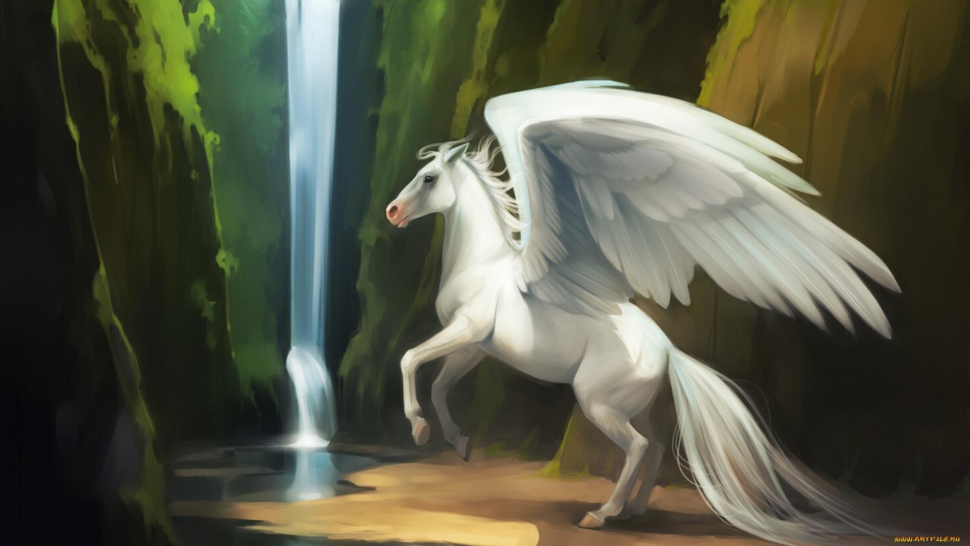 Pegasus Art wallpaper for computer