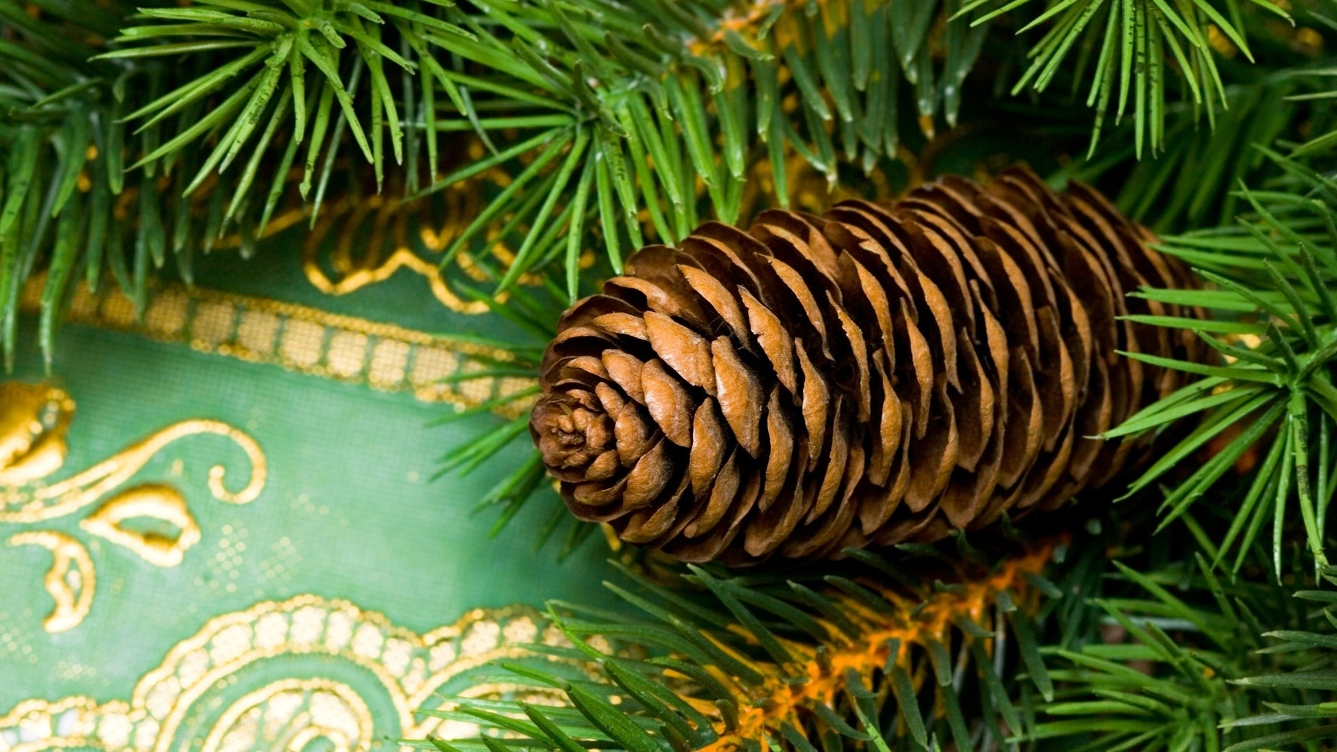 Pine Cone Background