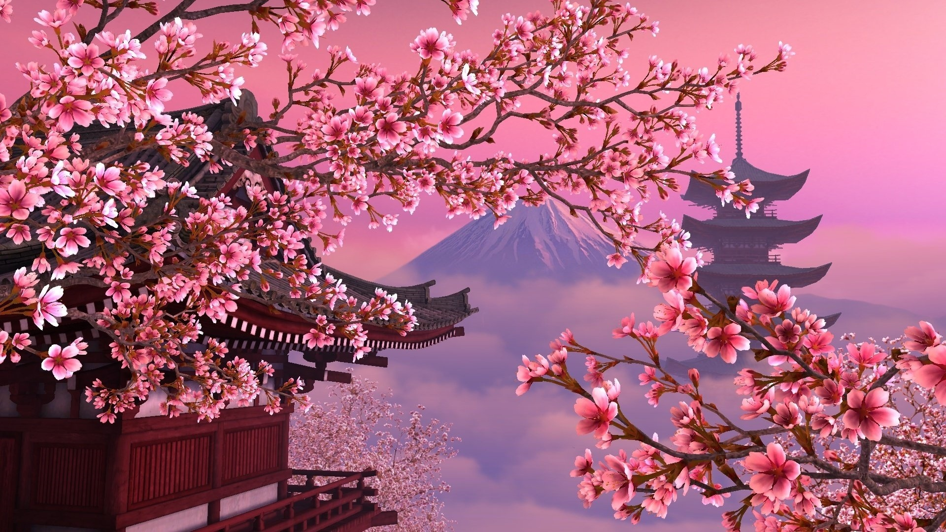 Sakura Blossom wallpaper for desktop