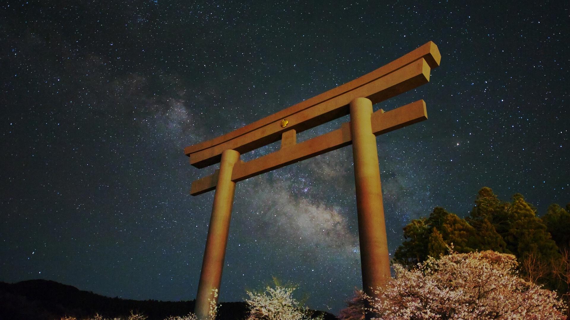Torii Gate Pic