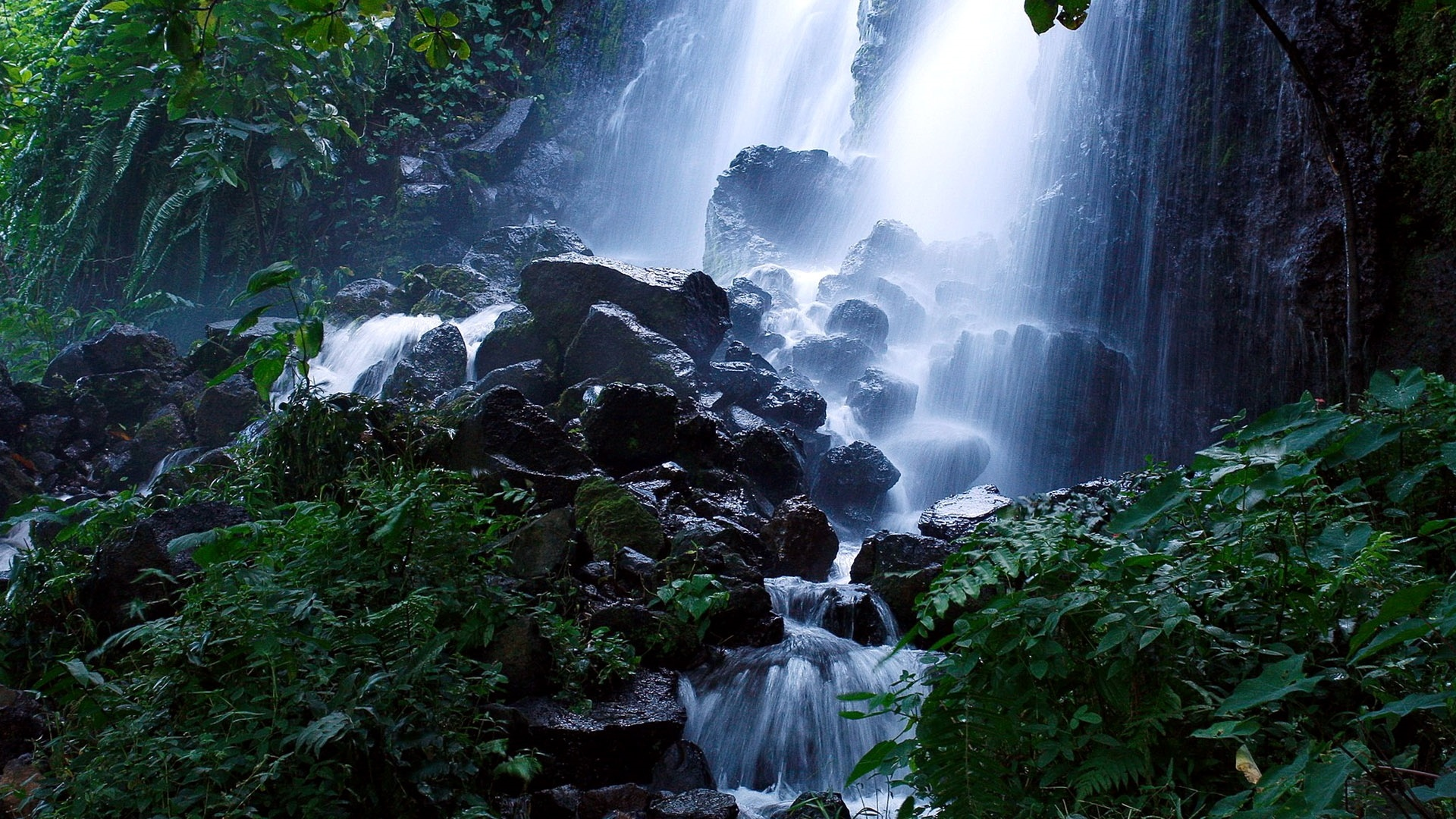 Forest Waterfall Desktop Wallpaper