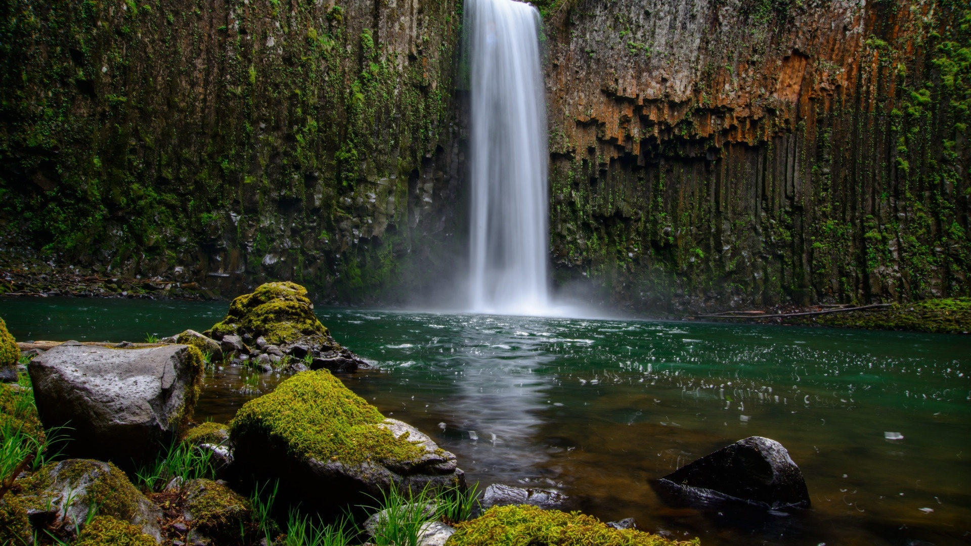 Forest Waterfall Wallpaper theme