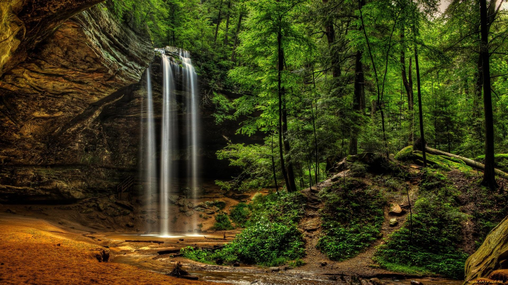 Forest Waterfall Desktop Wallpaper