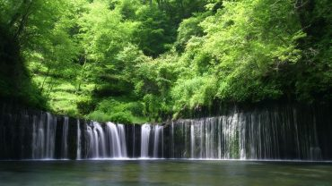 Forest Waterfall wallpaper for computer