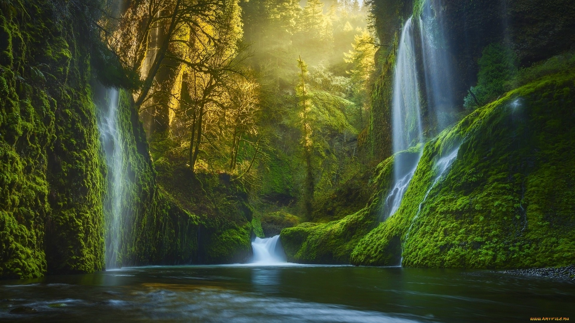 Forest Waterfall wallpaper photo hd