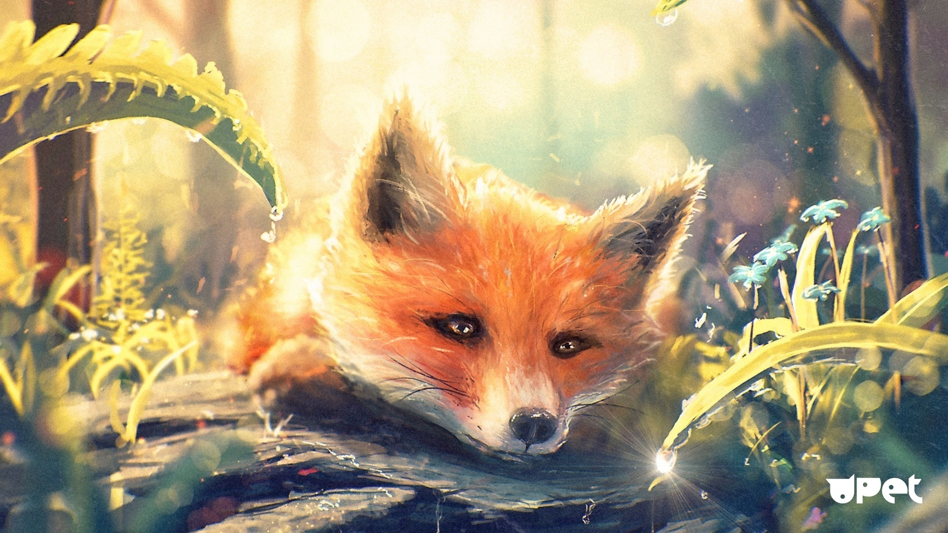 Fox Art wallpaper photo hd