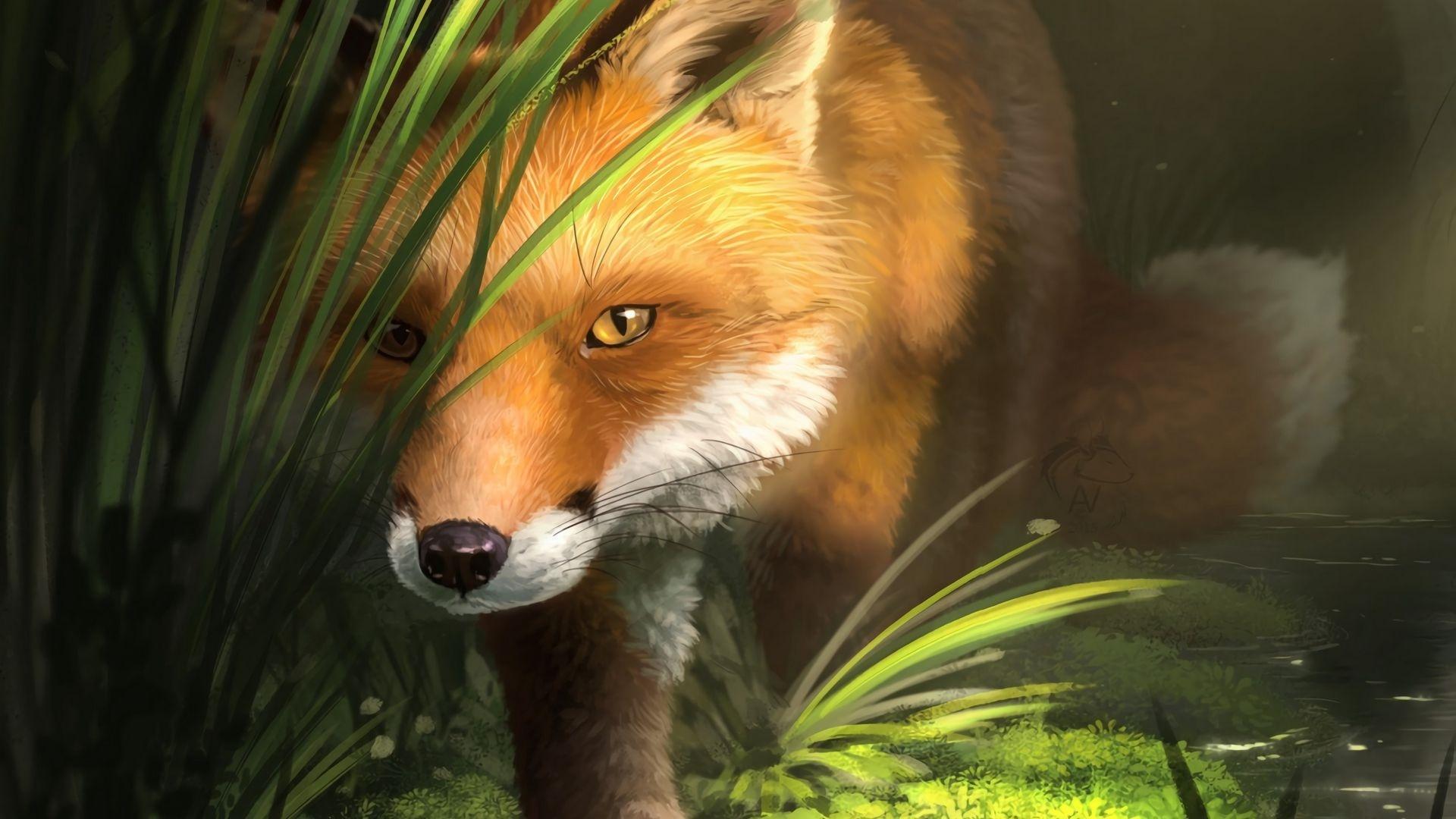 Fox Art Desktop Wallpaper
