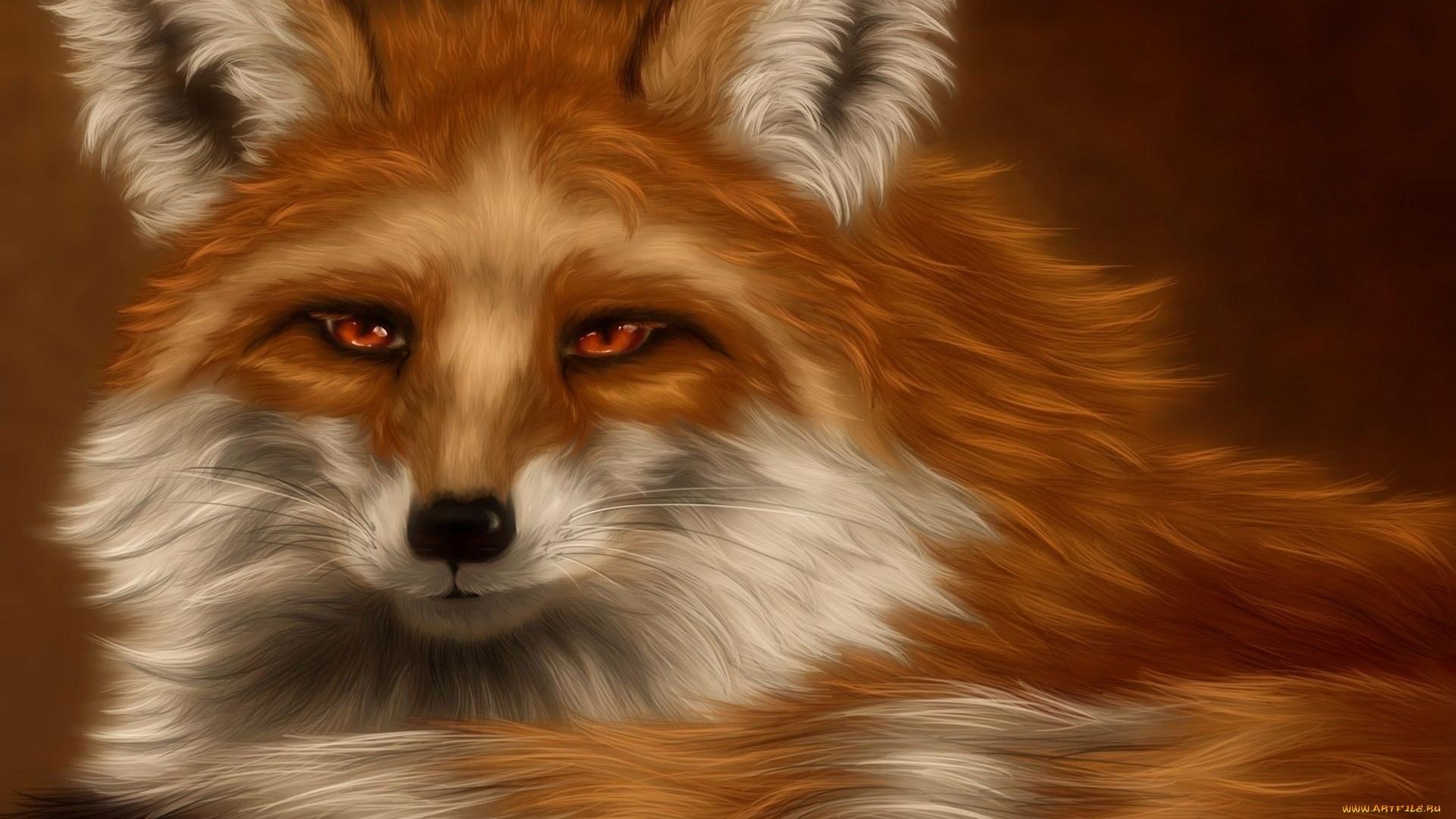 Fox Art desktop wallpaper hd