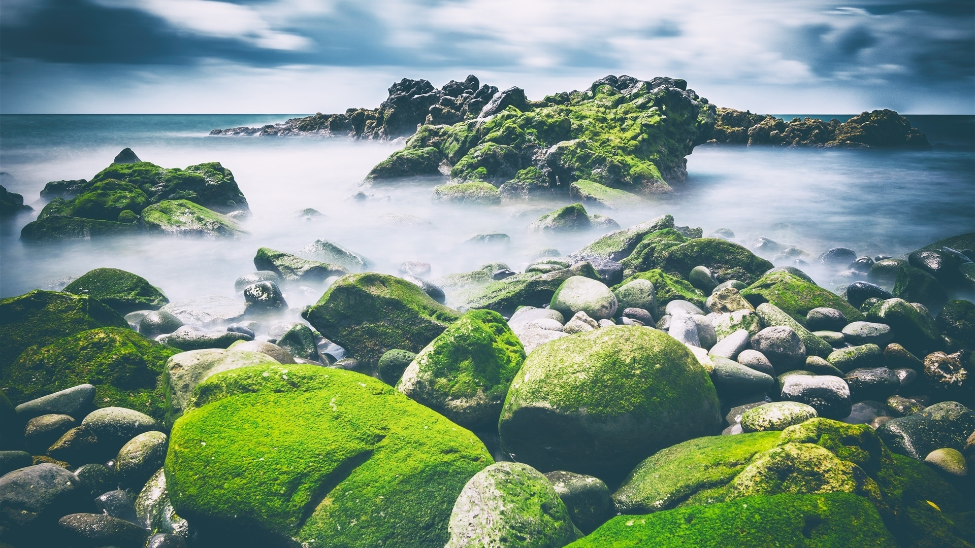Stones And Moss Pic