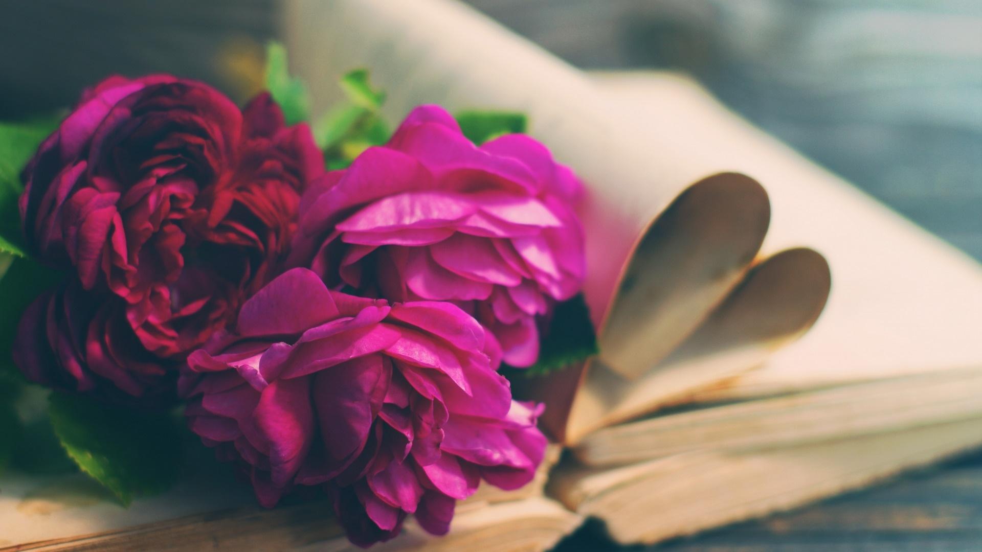 Book And Flower desktop wallpaper hd