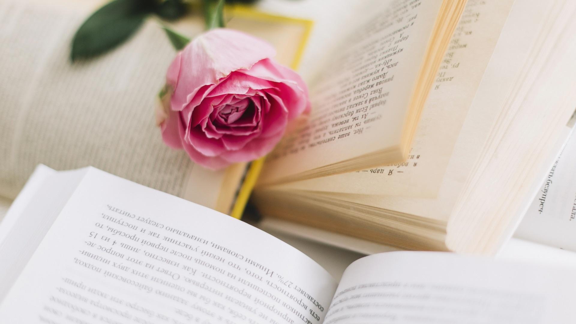 Book And Flower Desktop Wallpaper