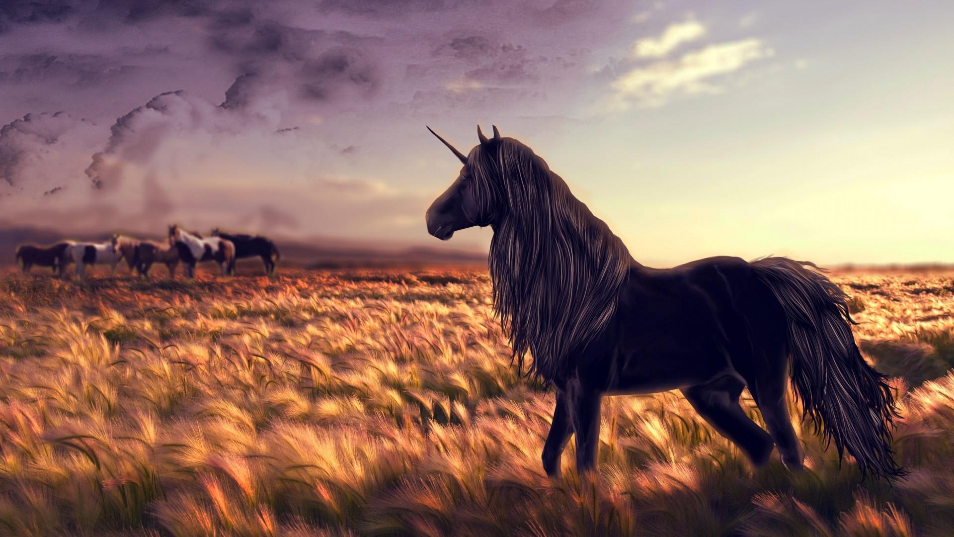 Magic Horses desktop wallpaper hd