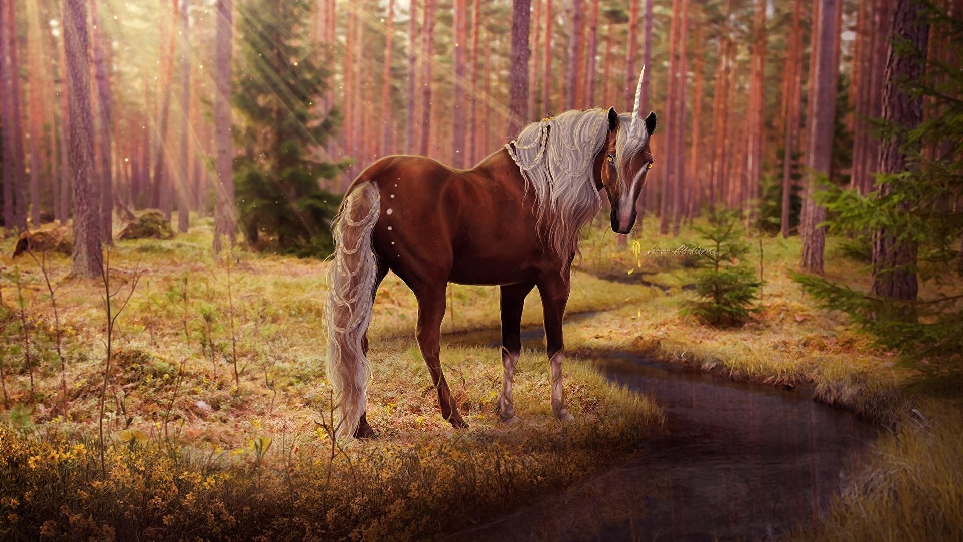 Magic Horses wallpaper for desktop