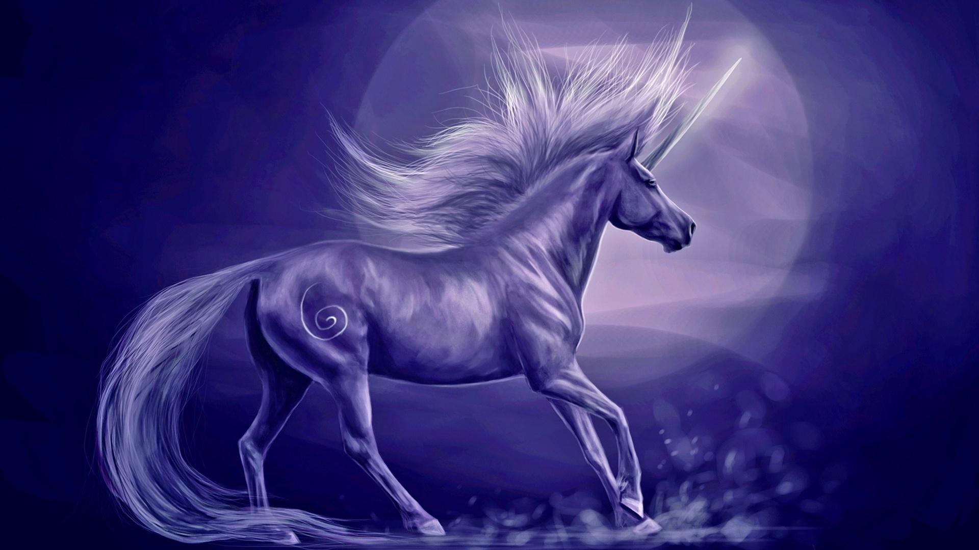 Magic Horses wallpaper photo hd