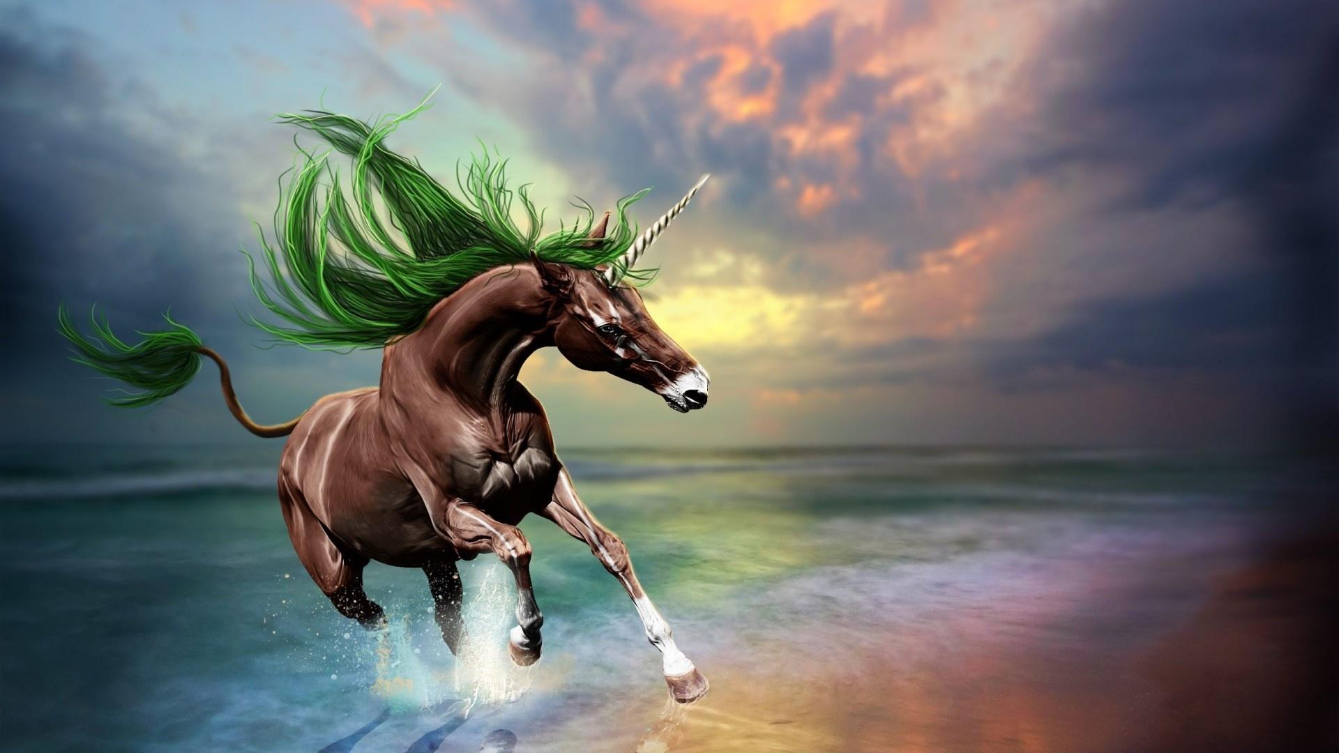 Magic Horses wallpaper for pc