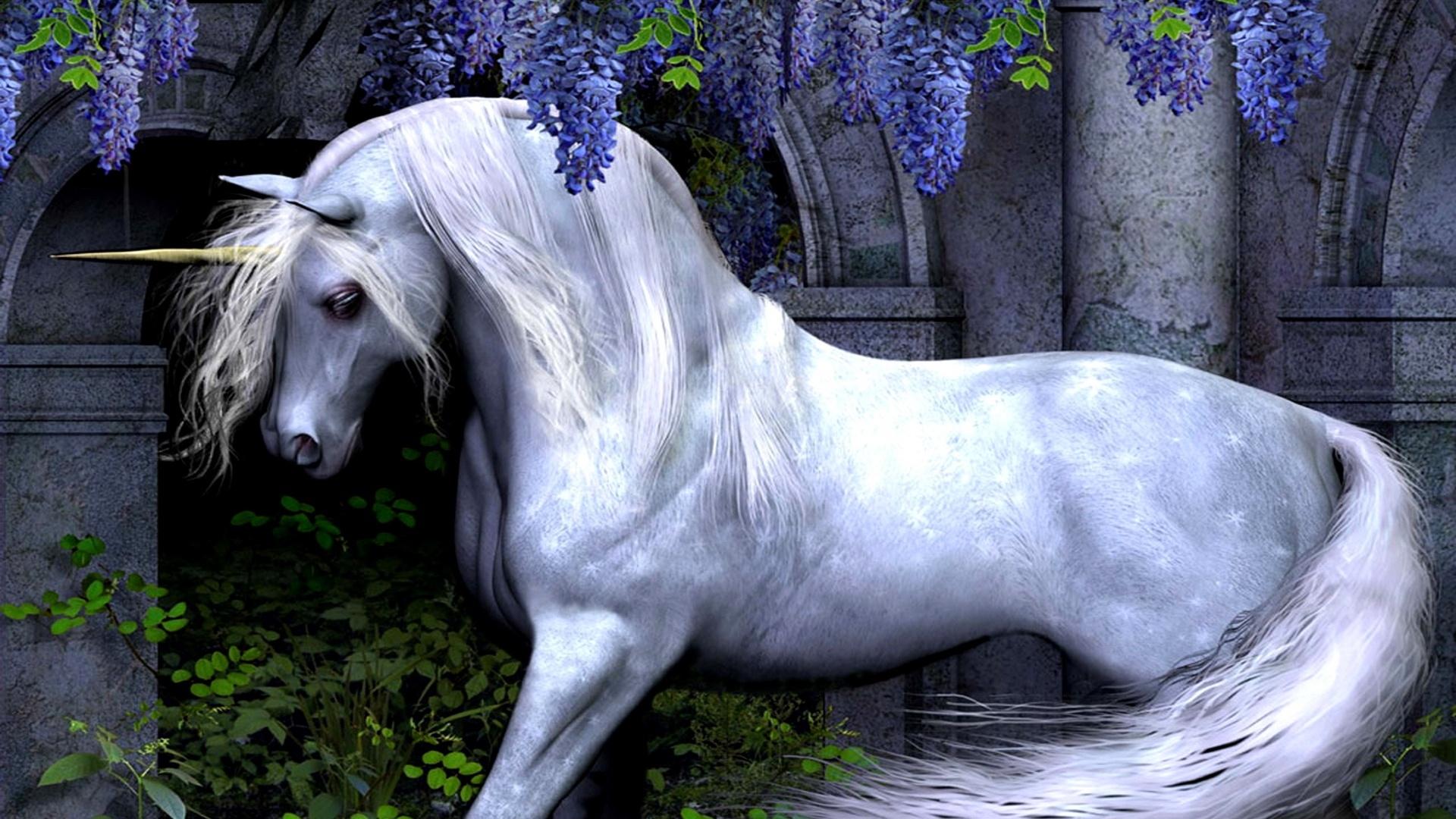 Magic Horses wallpaper for computer