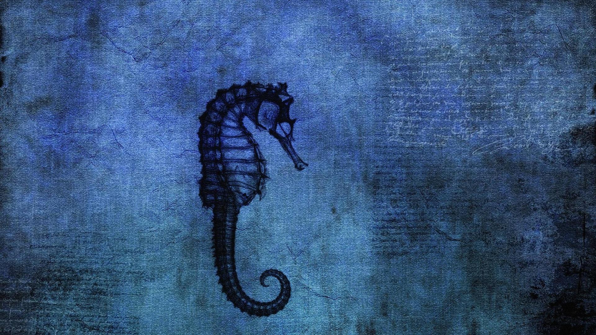 Seahorse Wallpaper theme