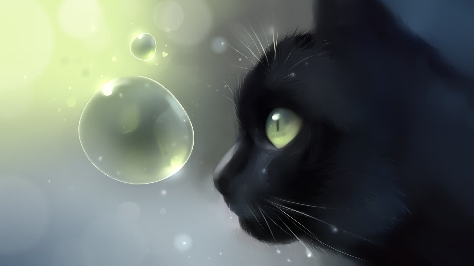 Drawn Cats Picture
