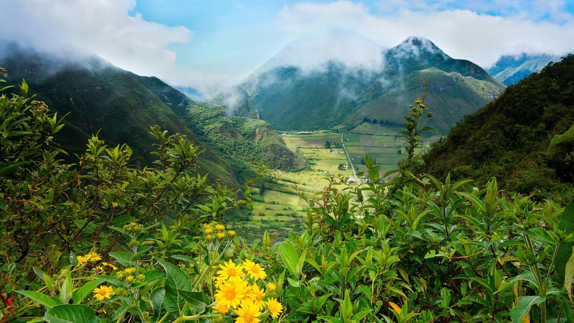 Ecuador Nature HD Wallpaper