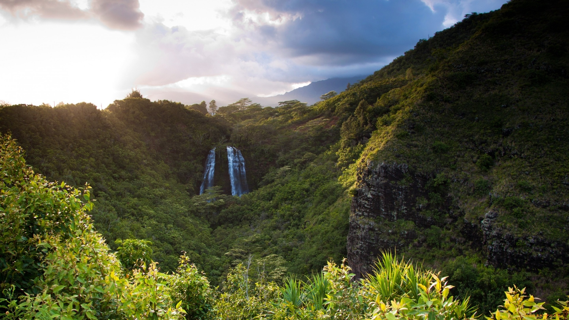 Ecuador Nature Image