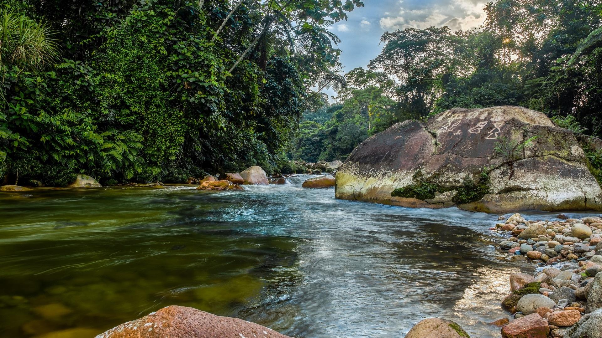 Ecuador Nature Background