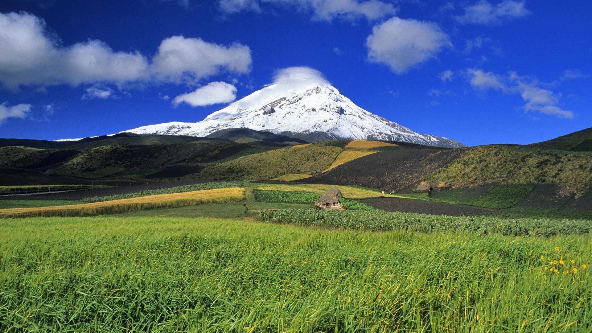 Ecuador Nature Picture