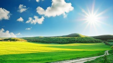 Sunny Day Background