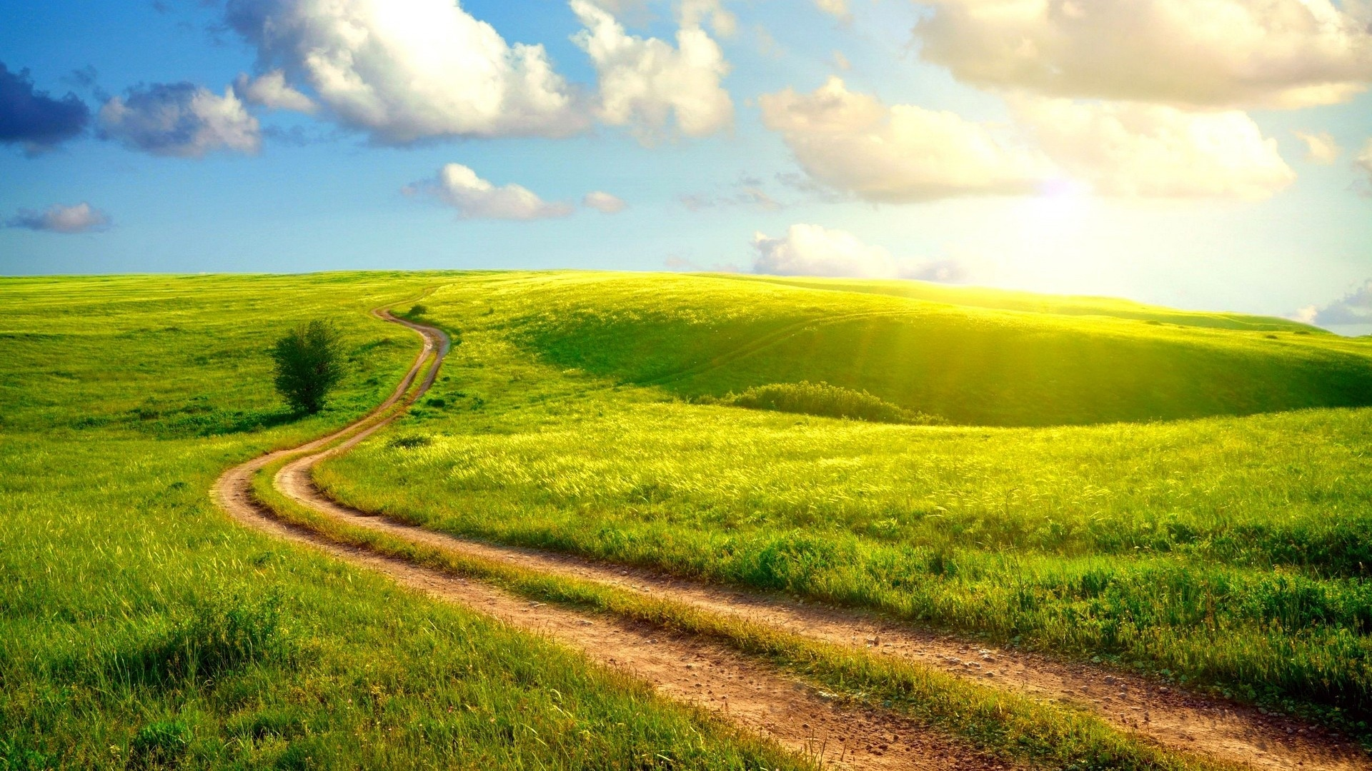 Sunny Day wallpaper for pc