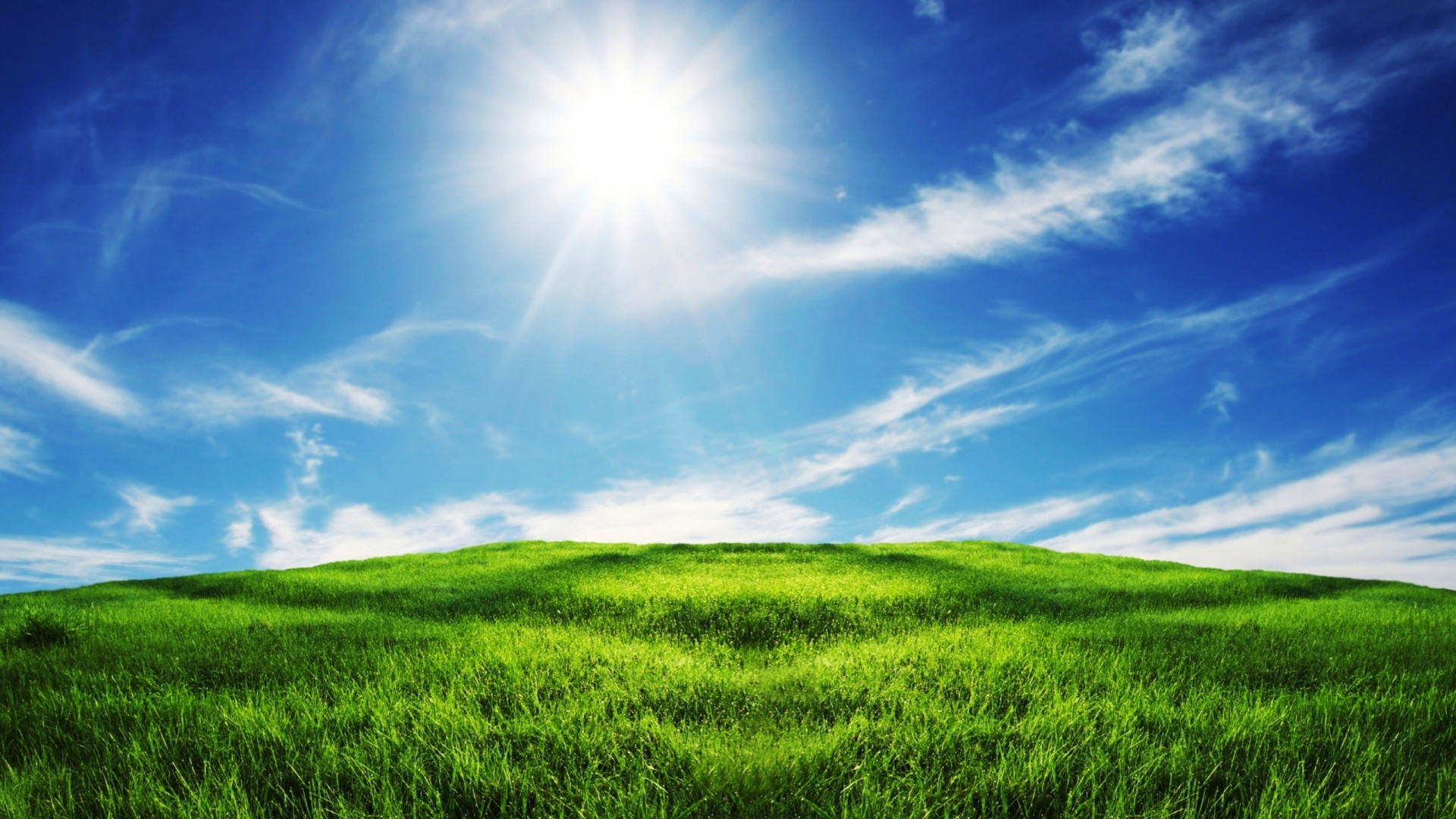 Sunny Day desktop wallpaper hd