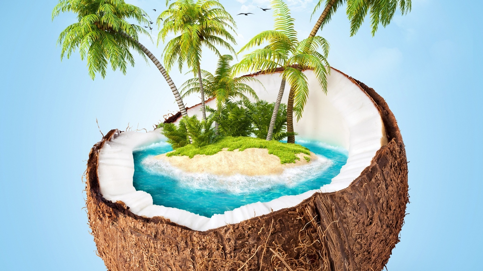 Coconuts By The Sea background wallpaper