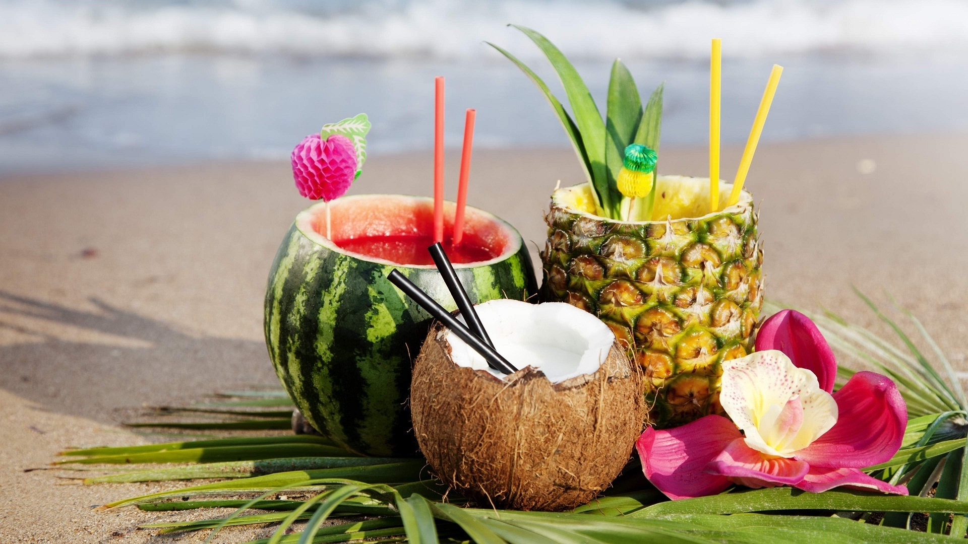 Coconuts By The Sea best wallpaper