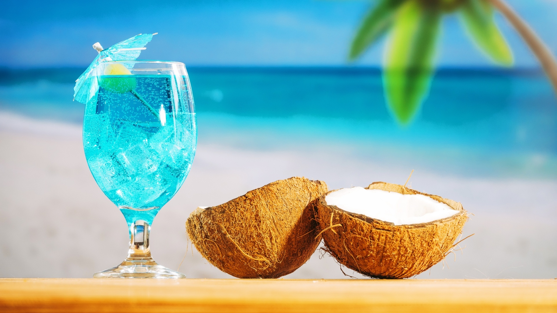 Coconuts By The Sea desktop wallpaper free download