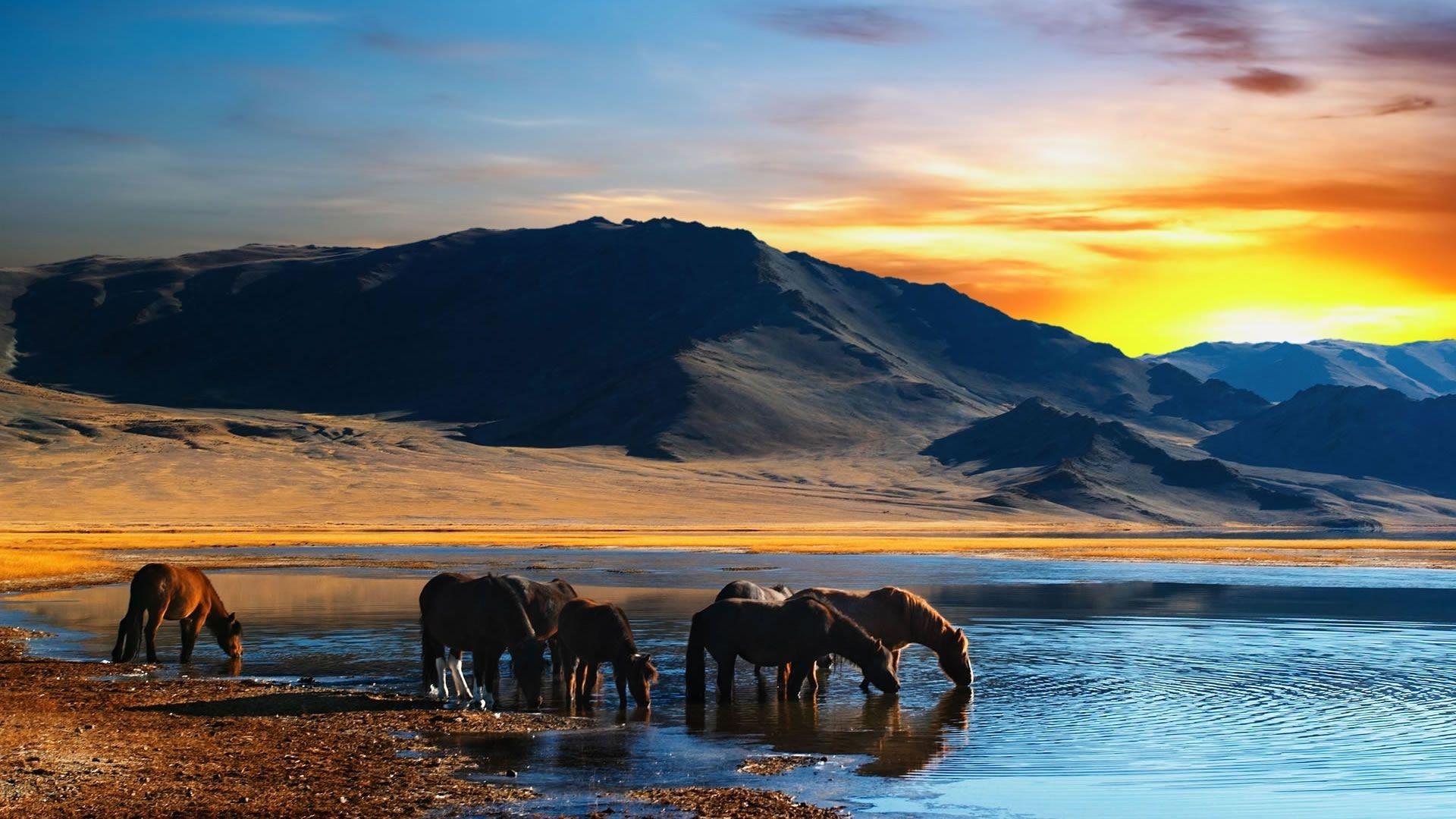 Mongolia Nature windows wallpaper