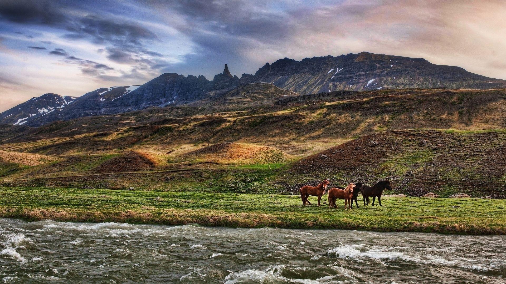 Mongolia Nature best background