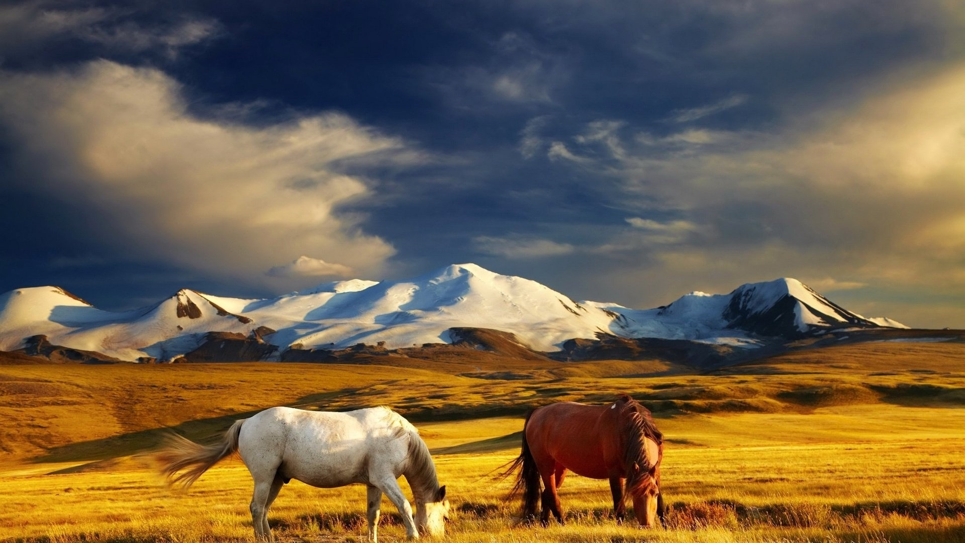Mongolia Nature background picture