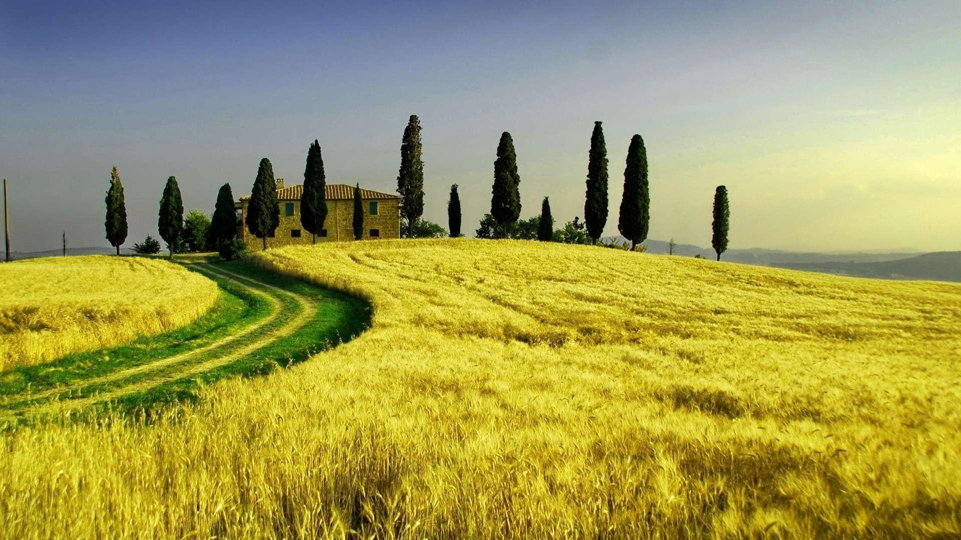 Tuscany best picture